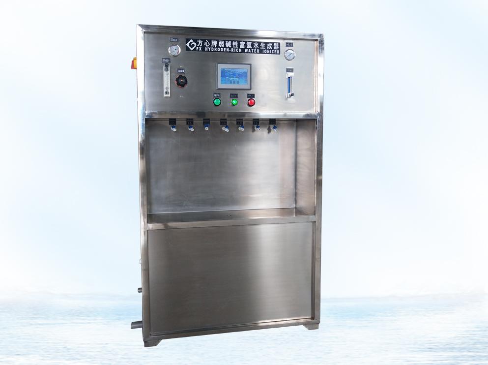Hydrogen Rich Water Ionizer