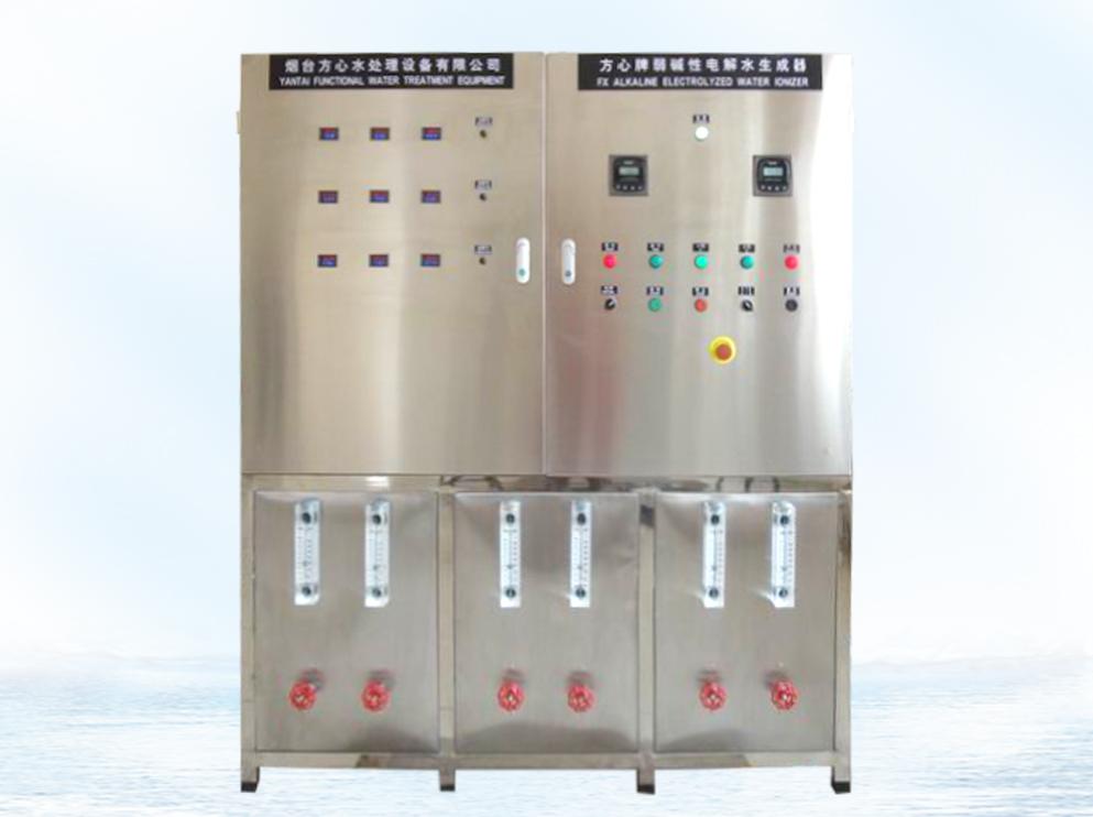 Weak Alkaline Water Ionizer (5T/H)